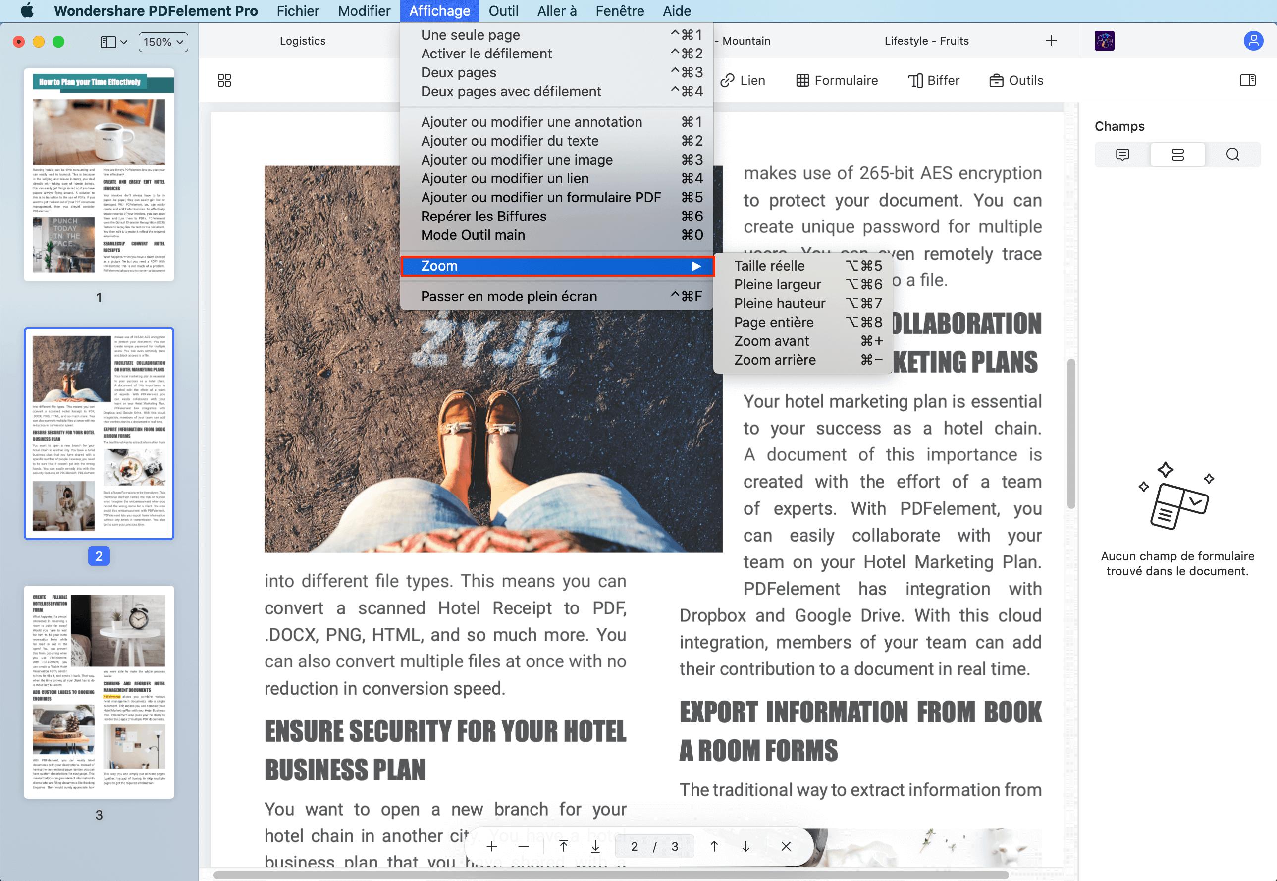 pdf zoom